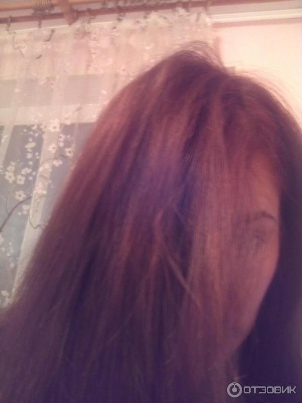 Цвет волос шоколадное пралине фото
