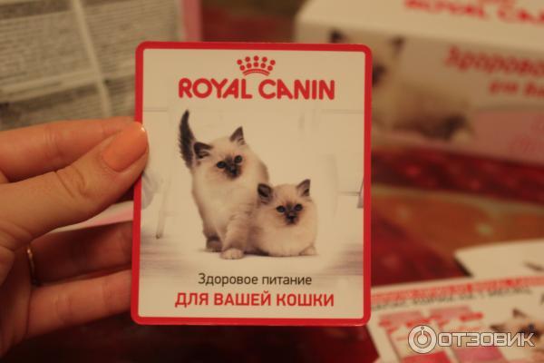 Корма для кошек Роял Канин (Royal Canin) - купить корм для