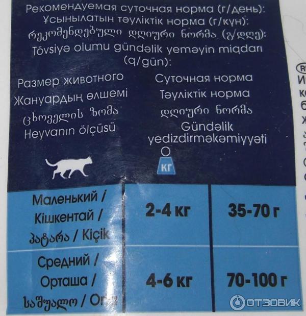 Сколько нужно в сутки коту сухого корма