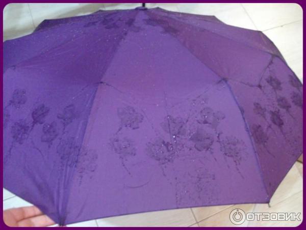 Зонты dolphin отзывы