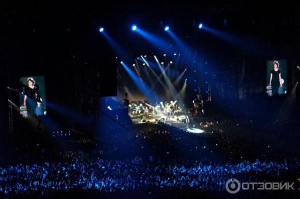 Москва концерт земфиры фото