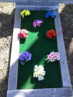 Какие цветы сажать на могилу и когда лучше весной или осенью 81