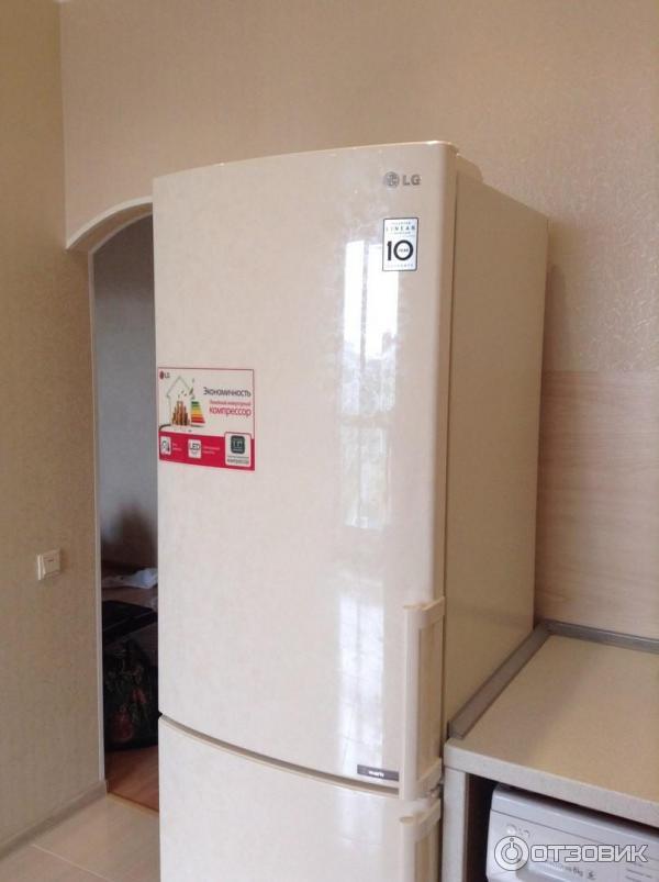 отзыв о холодильник Lg Ga B439yecz хороший холодильник с No Frost
