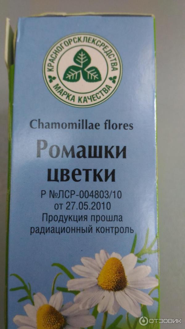 Цветки ромашки препараты