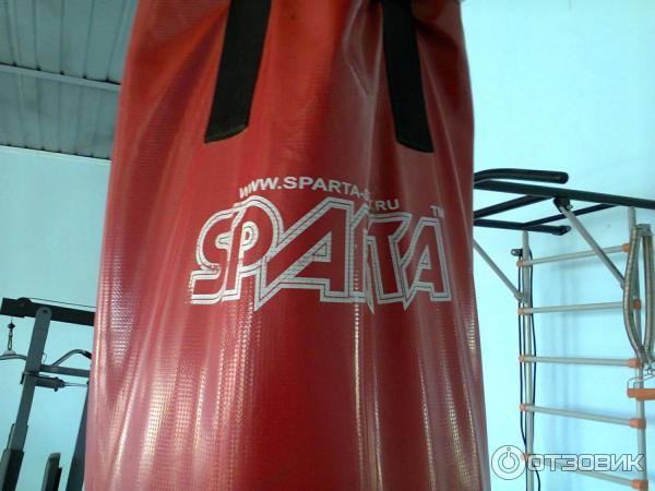 малышки спарта продажа боксерских мешков и груш жалеют сил чтобы