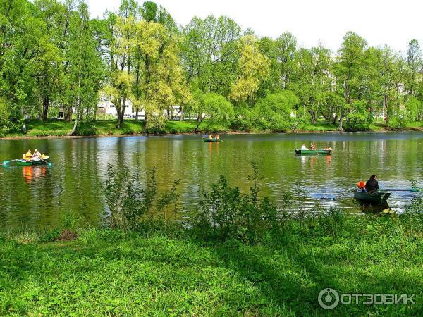 Где в Петербурге и окрестностях можно взять лодку или катамаран напрокат