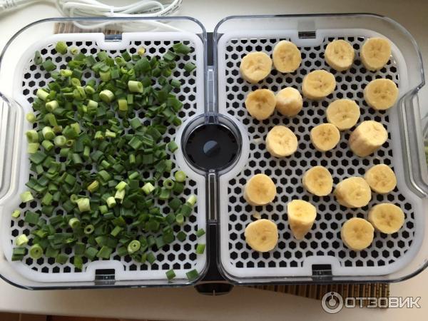 Домашний самодельный дегидратор для овощей и фруктов