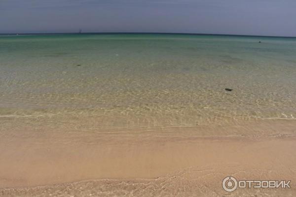 Влаговыводящее тонкое медузы в октябре тунис сканес эластичность