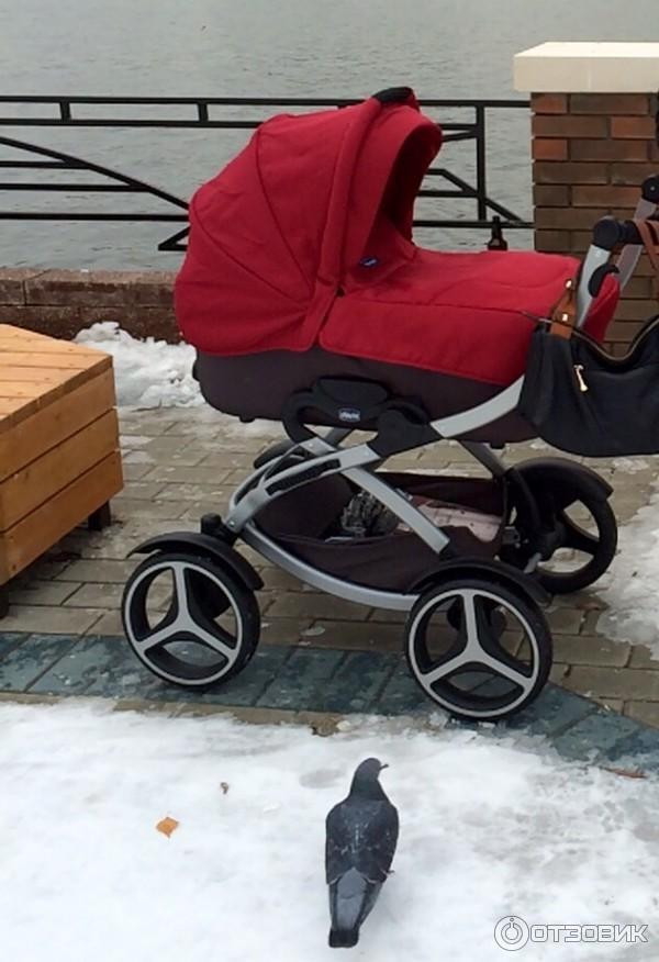 Самая удобная коляска для новорожденных рейтинг