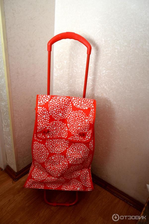 Техношок сумки хозяйственные на колесиках чемоданы сумки на колесах распродажа