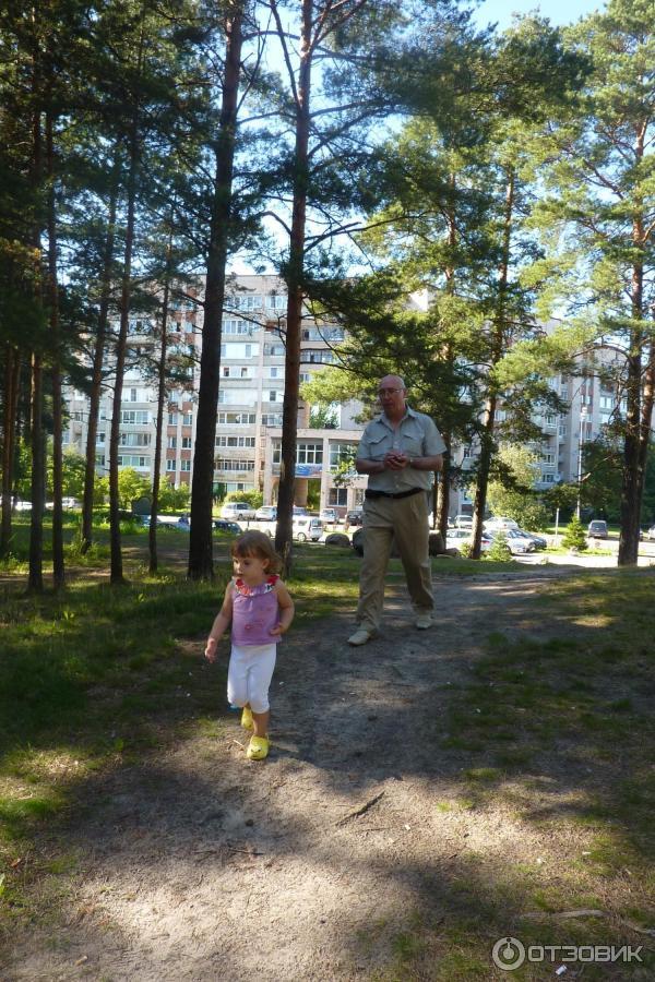сайты знакомств в городе сосновый бор ленинградской области