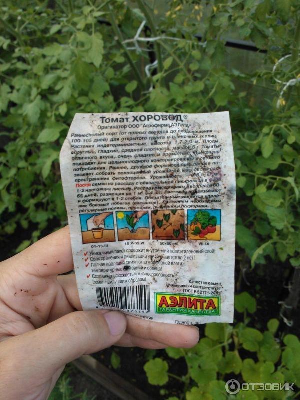 Как сажать томат хоровод 58