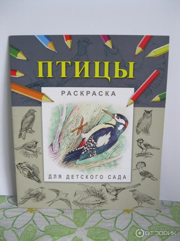 Раскраска для детского сада Птицы фото