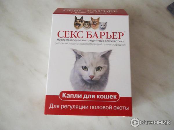 Секс барьер для кошек вреден