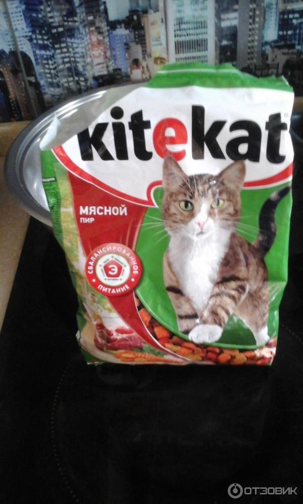Корм для кошек официальный сайт подарок 90