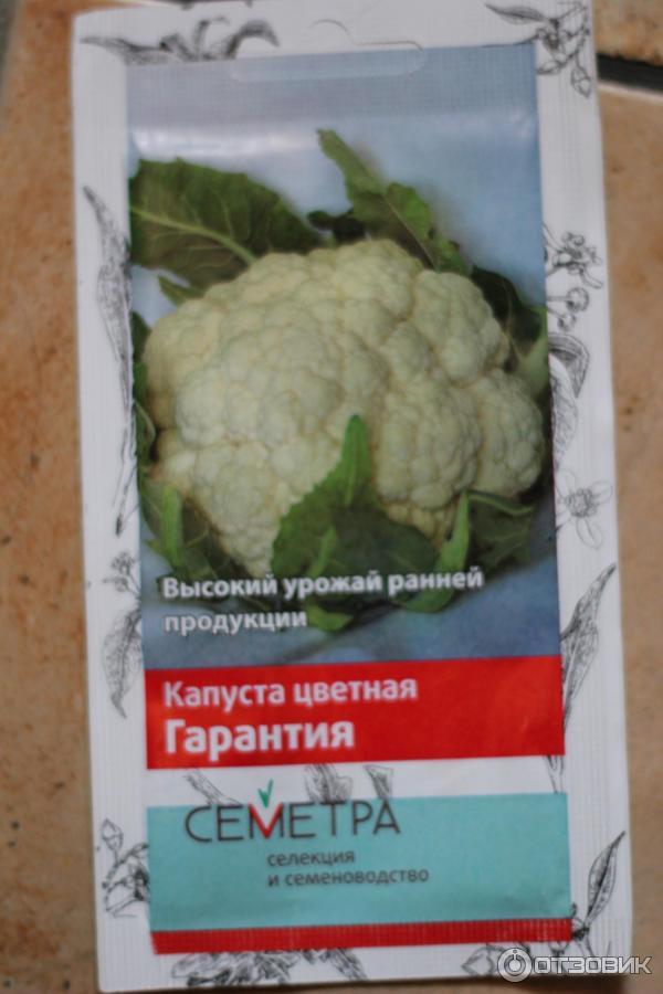 Цветная капуста как сажать из семян