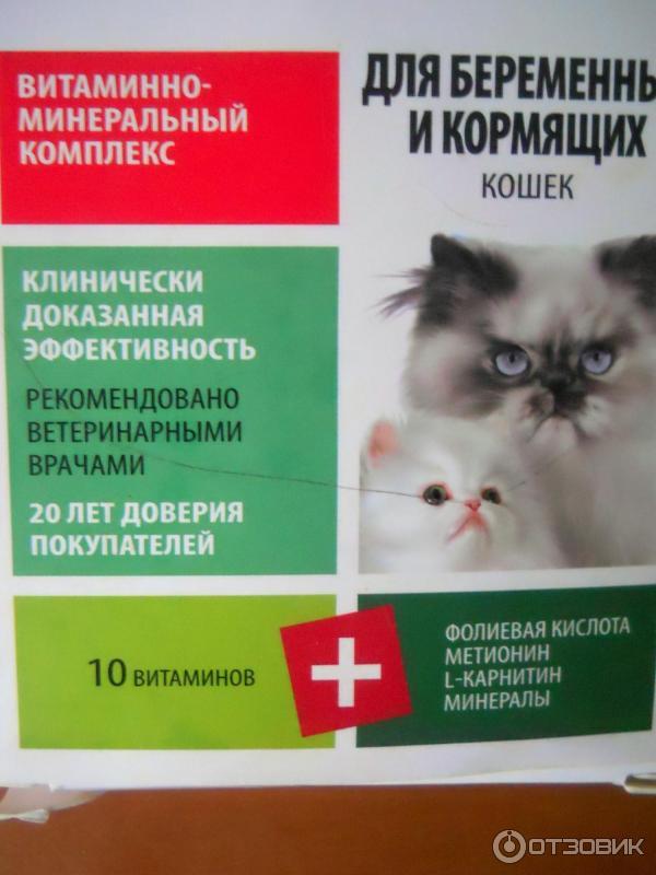 Нео фармавит для беременных и кормящих кошек отзывы 16