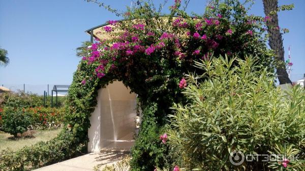 el mouradi skanes 4 тунис монастир