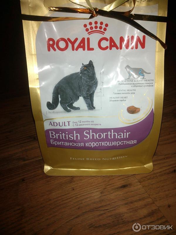Как кормить кошек корм royal canin