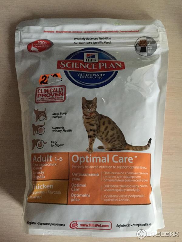 Как же понимать рекомендации ветеринаров?