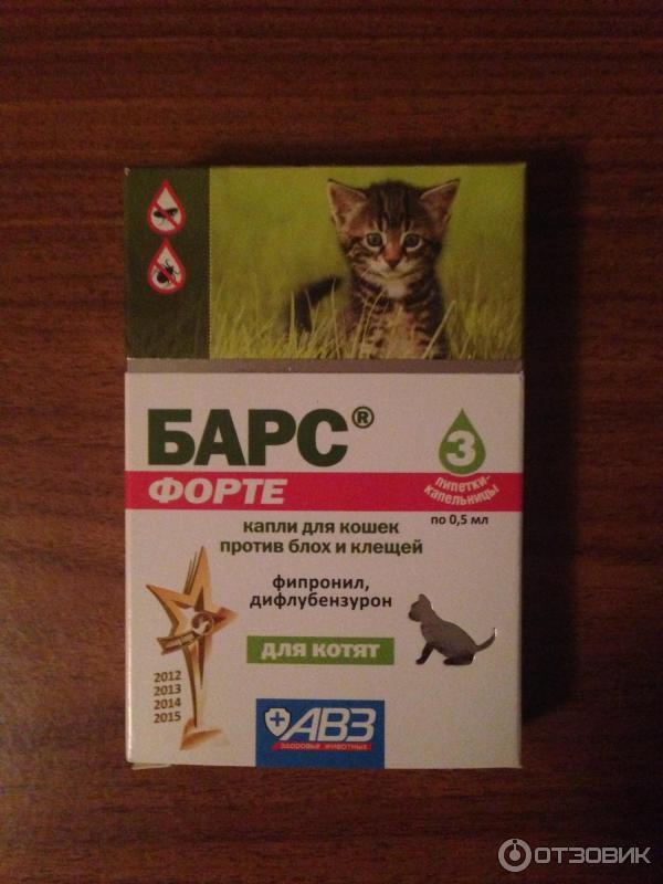 страницу пользователя, самые эффективные капли от ушного клеща для кошек молдинги