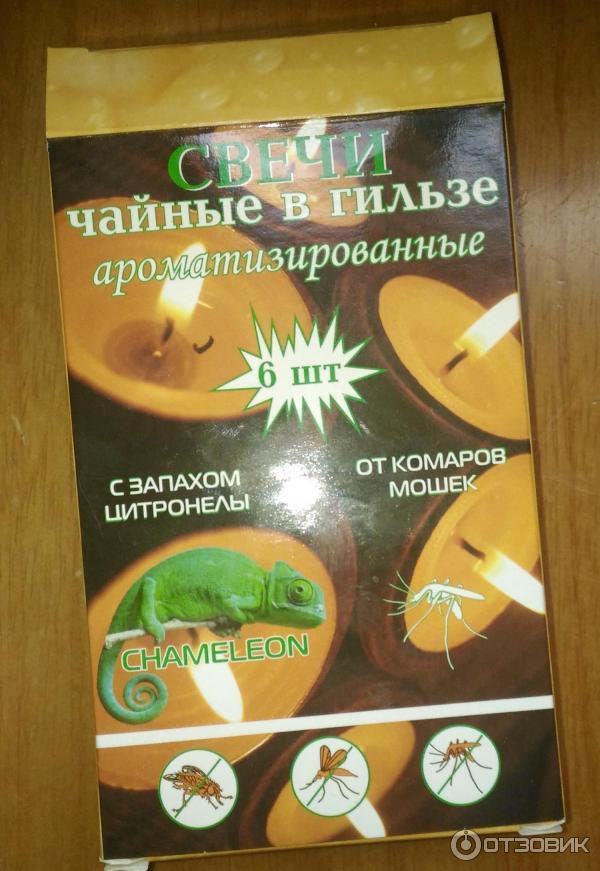 Lekcje Angielski  Polski Learn English  Free Online