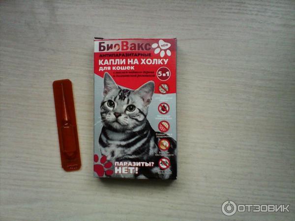 Биовакс капли для беременных кошек 27