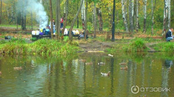 рыбалка в парках пушкина