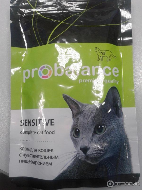 Почему кот перестал есть сухой корм