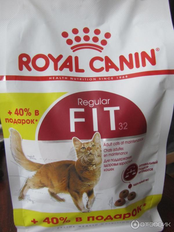 Котенок не есть корм royal canin