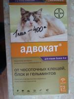 Биовакс капли для беременных кошек 36