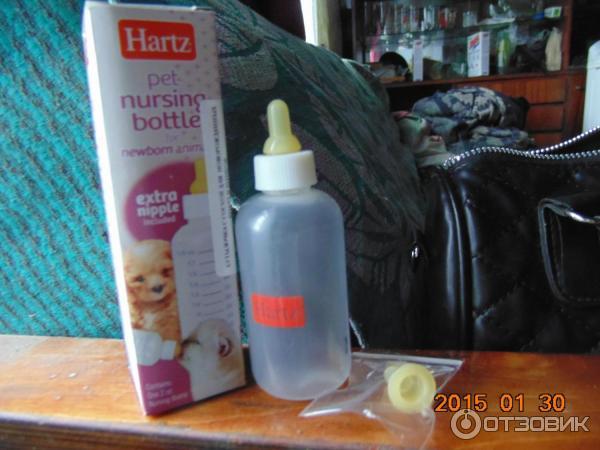 Как сделать бутылочку для новорожденных котят 10