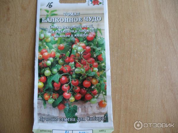 """Отзыв о семена томата золотая сотка алтая """"балконное чудо"""" Ч."""
