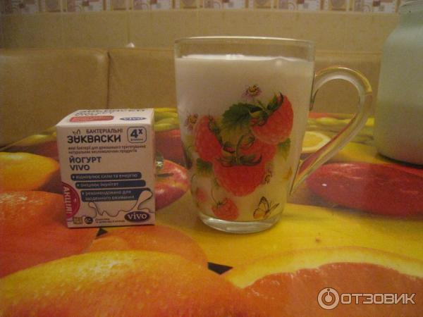 Как сделать йогурт из виво