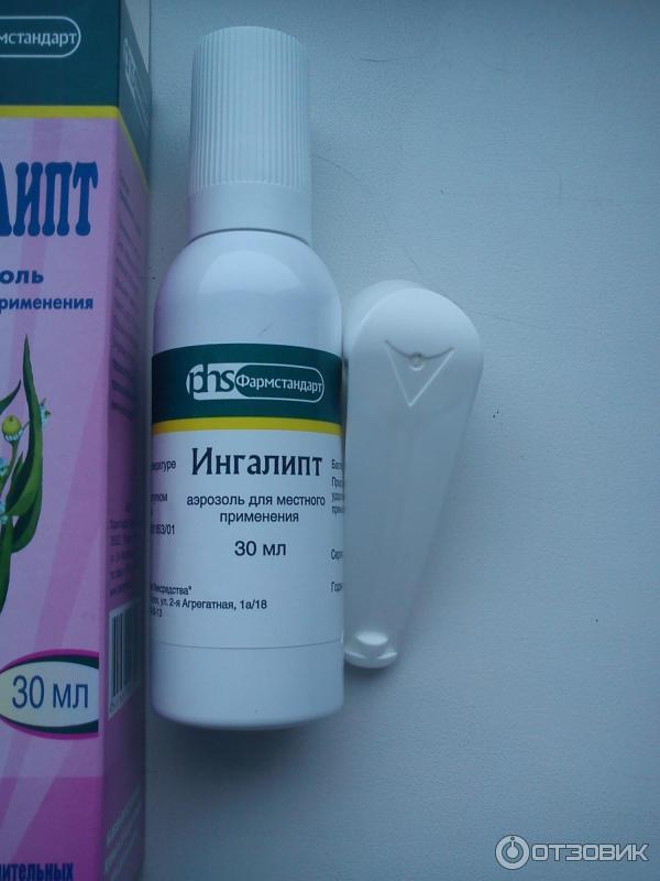 Питание для беременных разгрузочное 4