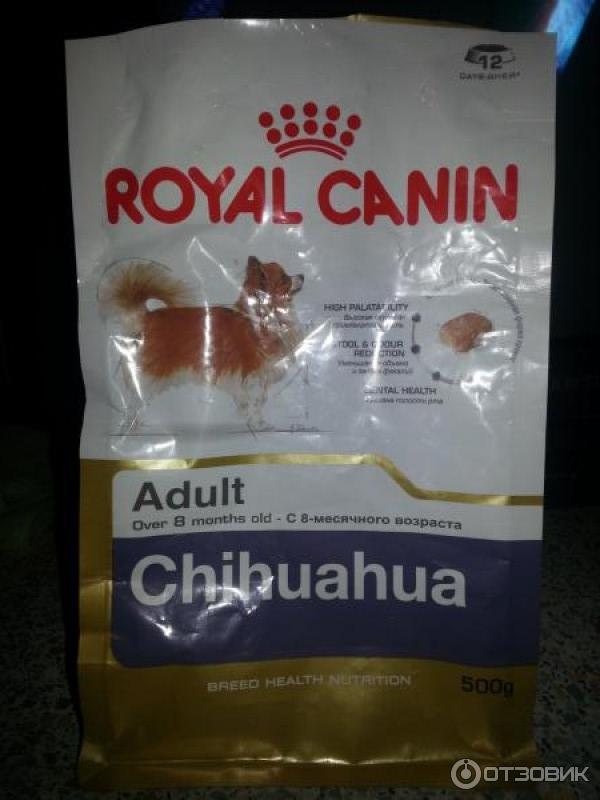 Корм для чихуахуа корм royal canin