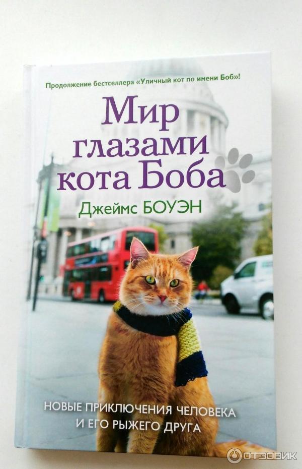 Подарок от кота боба обложка 47