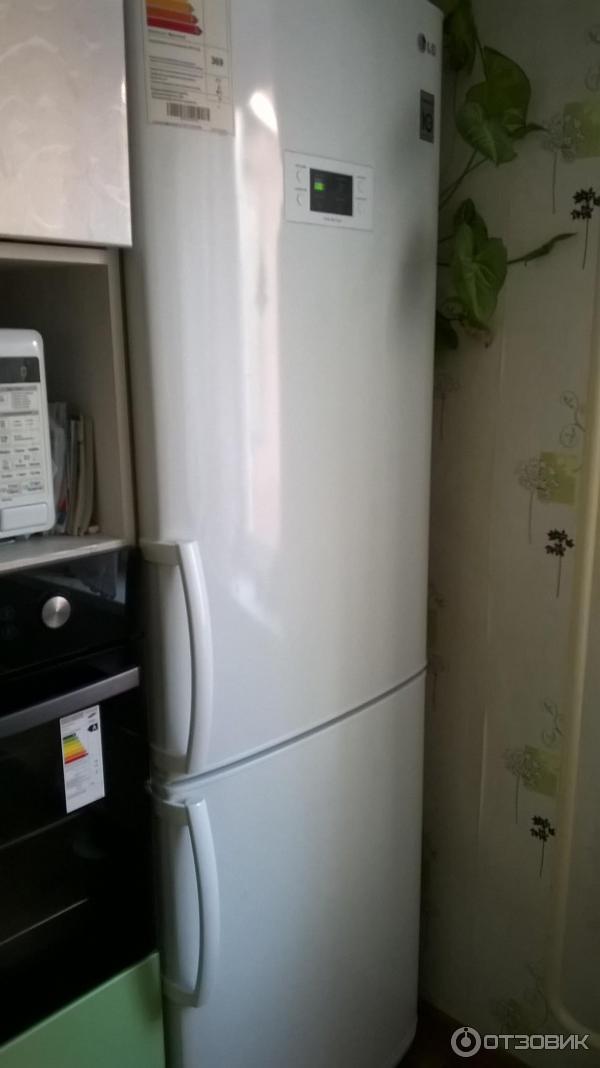 Ремонт холодильника лджи ноу фрост