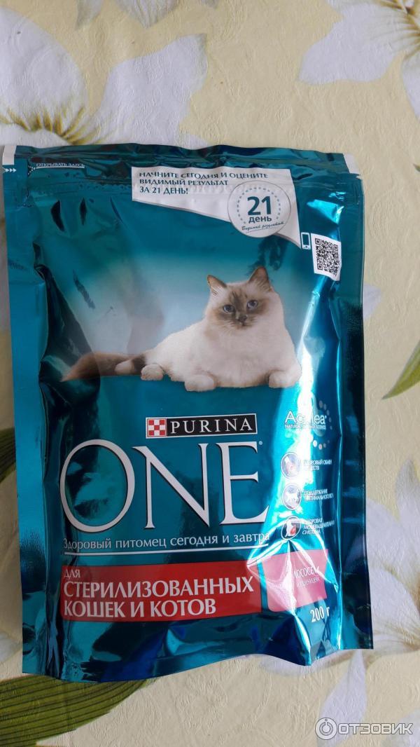 Корм для кошек официальный сайт подарок 28
