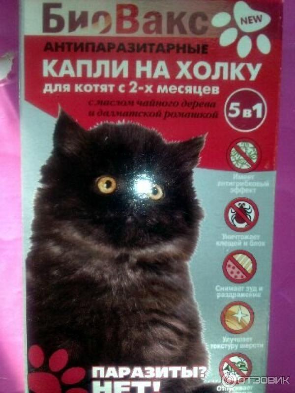 Биовакс капли для беременных кошек 59