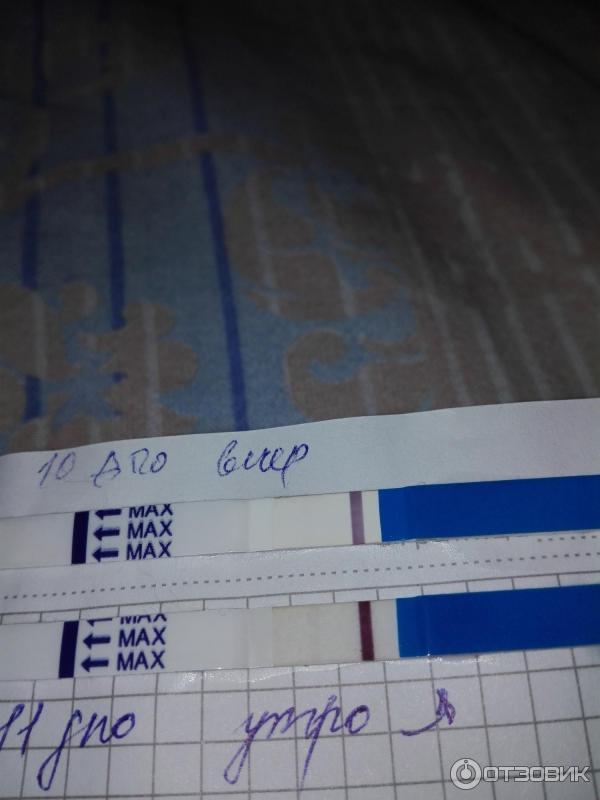 2 полоски на тесте для беременности