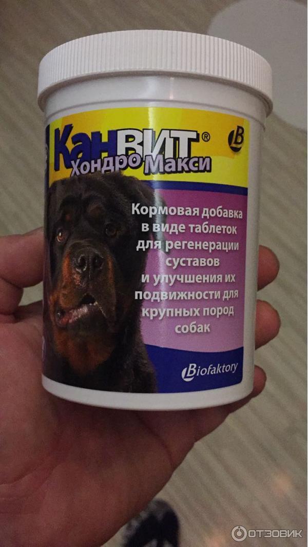 Купить Канвит Хондро для собак в Москве по низкой цене в