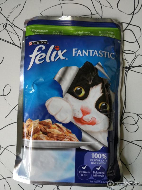 Как приучить котенка к лотку - Питомник британских кошек