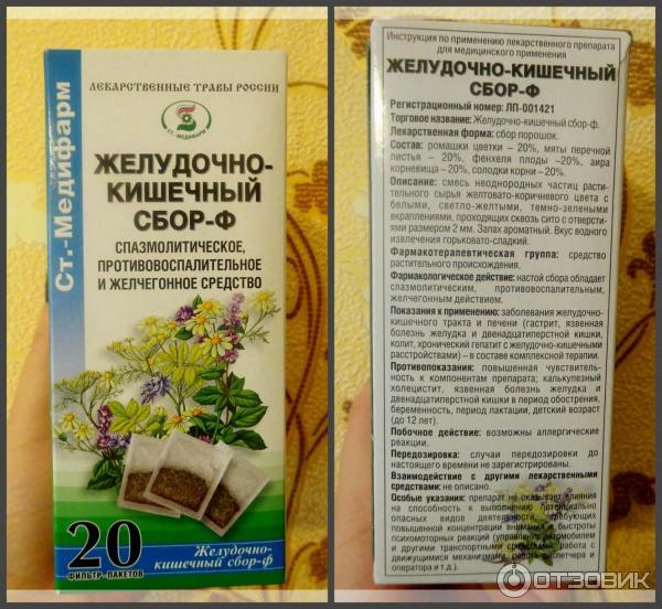 Травы для лечения желудка и кишечника