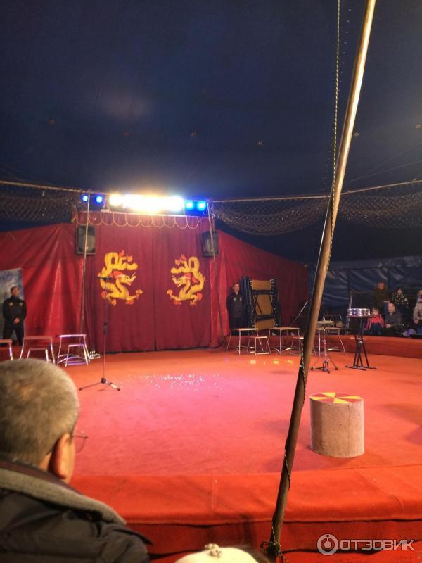 Цирк  Википедия