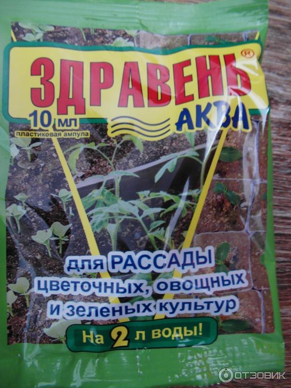 Какое удобрение для рассады помидор 83