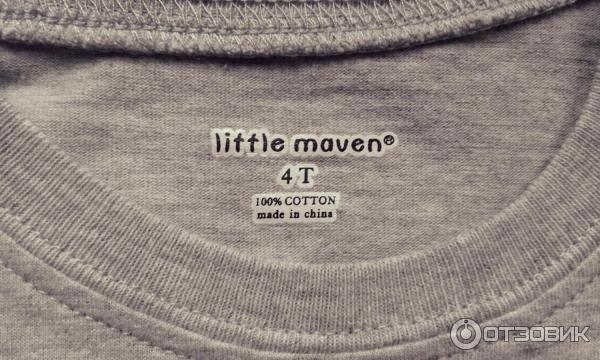 Детский лонгслив Little Maven фото