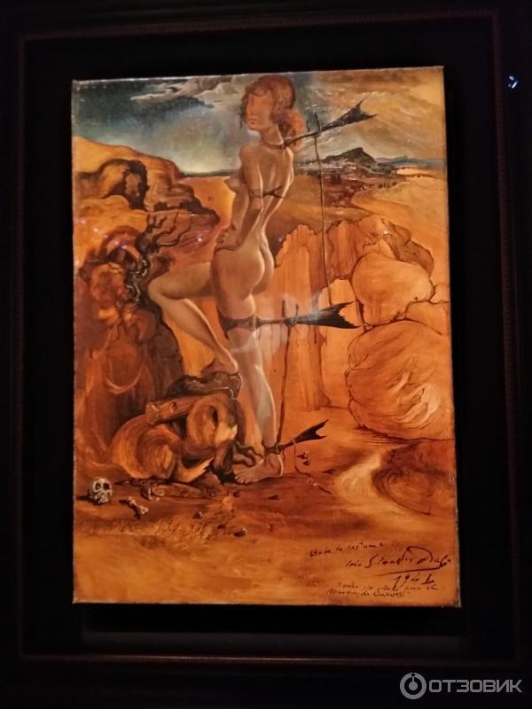 Выставка сальвадор