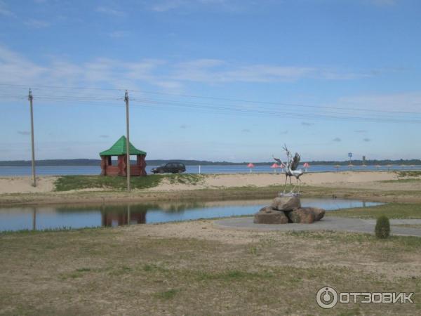 Пляжный парк Браслава (Беларусь, Браслав) фото