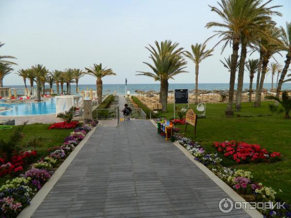 шахерезада тунис